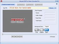 Moyea Flash to Video Converter Pro